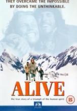20061024210431-alive.jpg